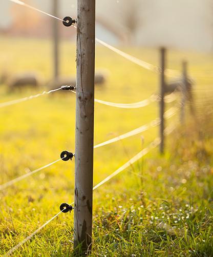 câblage industriel pour secteur agro-alimentaire